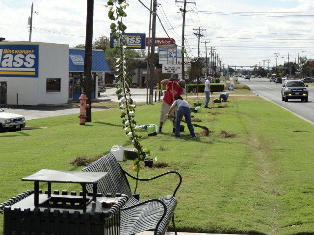 Photos from Saturday's Tree Planting